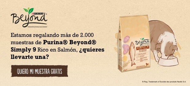 Purina Beyond®